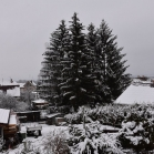 První sníh 2021-01-07 036