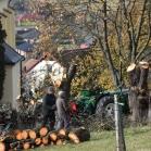 Toulky okolo Všeně 2019-11-15 004
