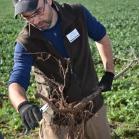 Výsadba ovocných stromů 2019-10-27 051