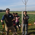Výsadba ovocných stromů 2019-10-27 052