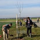 Výsadba ovocných stromů 2019-10-27 086