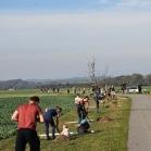 Výsadba ovocných stromů 2019-10-27 110
