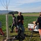Výsadba ovocných stromů 2019-10-27 116